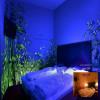 1lt vernice fosforescente fotoluminescente si illumina al buio