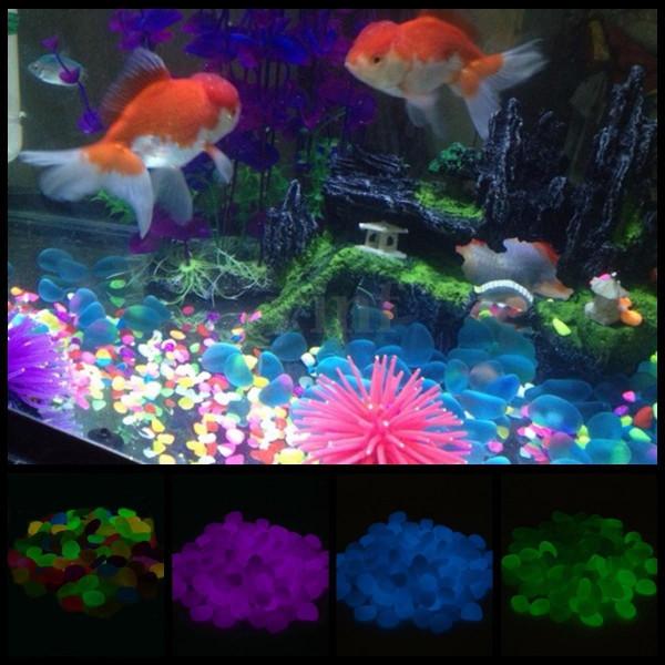 Sassi luminosi in resina fotoluminescente multicolor per for Arredo shop on line