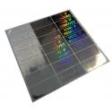 100 Etichette adesive sigilli ologrammi di garanzia e sicurezza 20x50mm (EXTRA LARGE)