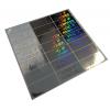 100 Etichette adesive sigilli ologrammi di garanzia e sicurezza 20x50mm