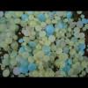 Bottoni in vetro fluorescenti fosforescenti che si illuminano
